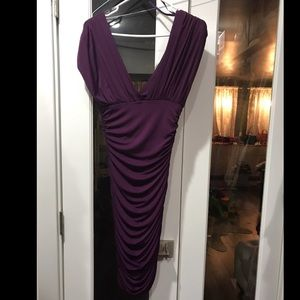 Plum Arden B dress with ruching on sides.